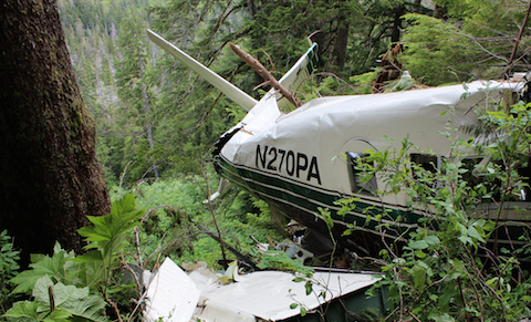 Promech Air crash site